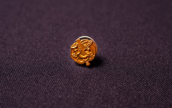 Revers stift RLJ brons